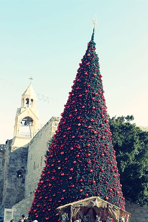 Christmas tree - Christmas tree in Bethlehem, behind it Church of the Nativity, 2014