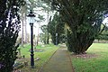 Church path, Ullingswick church yard - geograph.org.uk - 1199445.jpg