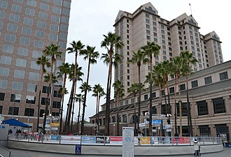 Circle of Palms Plaza - The ice rink at the plaza in the Winter