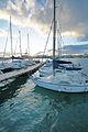 Circolo Nautico NIC Porto di Catania Sicilia Italy Italia - Creative Commons by gnuckx (5386836654).jpg