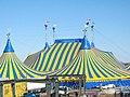 Cirque du Soleil2.jpg