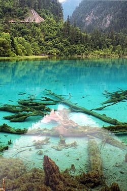 Clear water of Jiuzhaigou Valley.jpg