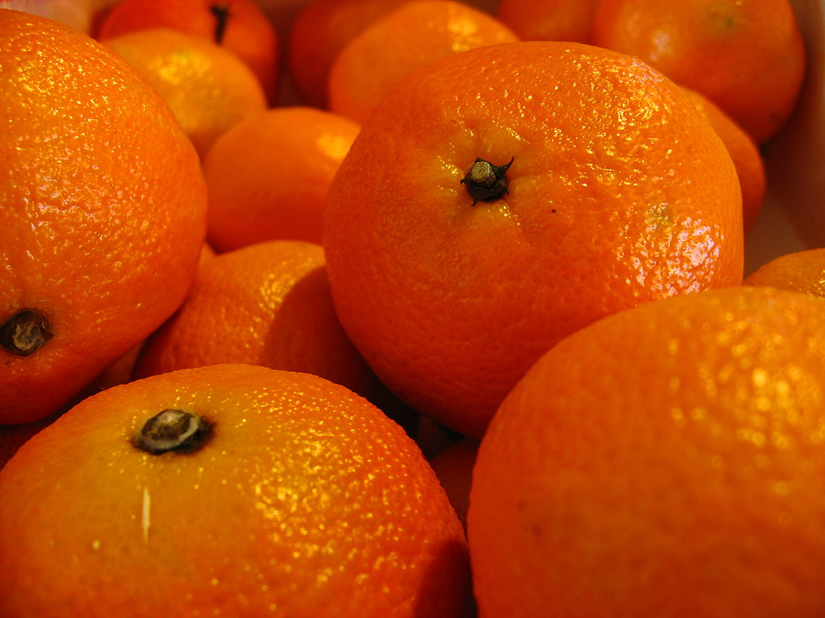 clementine frucht wikipedia. Black Bedroom Furniture Sets. Home Design Ideas