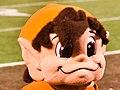 Cleveland Browns vs. Washington Redskins (20394503990).jpg