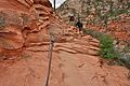 Climbing up to Angels Landing (Zion National Park) (3444018704).jpg
