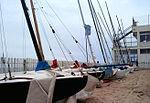 Club Natació Badalona3.jpg
