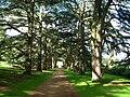 Clumber Park - geograph.org.uk - 1106044.jpg
