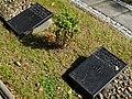 Cmentarz wojenny z I i II wojny światowej Częstochowa ul św Rocha ------- 5.JPG