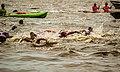 Competencia deportiva en la Laguna Setubal - Santa Fe 1.jpg
