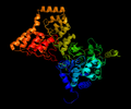 Complex between PP1 and a portion of MYPT1 structure.png