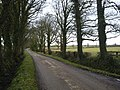 Country Lane North County Dublin - geograph.org.uk - 1720728.jpg