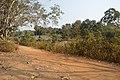Countryside - Sasapasi - Dhenkanal 2018-01-25 9732.JPG