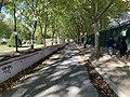 Cours Maréchaux - Paris (FR75) - 2020-10-10 - 1.jpg