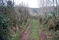 Courtmead Lane - geograph.org.uk - 1658884.jpg
