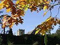 Cowley Church on a lovely Autumn Day - geograph.org.uk - 1533106.jpg