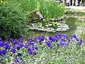 Cveće u proleće - panoramio.jpg