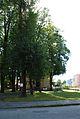 Czerweny-Haus Zugangsallee.jpg