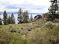 DSC02799, South Lake Tahoe, Nevada, USA (8098636626).jpg