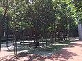 Damansara Perdana, 47820 Petaling Jaya, Selangor, Malaysia - panoramio (1).jpg