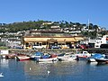 Dartmouth Station and Town Pool - geograph.org.uk - 8374.jpg
