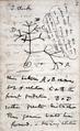 Darwin Tree 1837.png