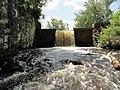 Davidson Mill Pond Park, South Brunswick, New Jersey USA July 15th, 2013 - panoramio (18).jpg
