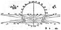 De gli horologi solari-1638-illustrazioni-04.PNG