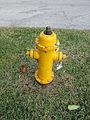 Deerfield Beach Jan2014 Hydrant 1.JPG