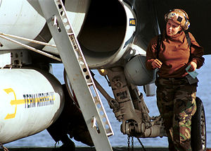 Defense.gov photo essay 011105-N-9421C-004.jpg