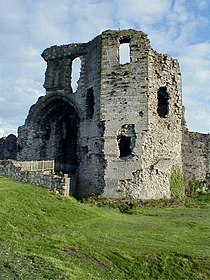 Denbigh Castle.jpg