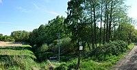 Dessau-Roßlau, Mosigkau, Hinterteichwiese natural monument.jpg