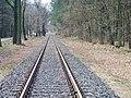 Dessau-Wörlitzer Eisenbahn im Biosphärenreservat Mittlere Elbe bei Oranienbaum-Wörlitz - panoramio (3).jpg