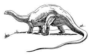 Line art drawing of a brontosaurus.