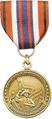DoT Guardian Medal.png