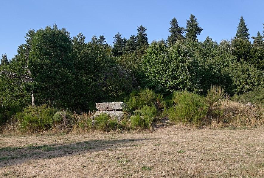 Vue d'ensemble du dolmen des Baumes à Borée en Ardèche.