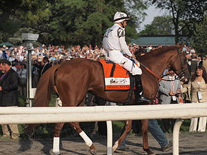 Drosselmeyer - Image: Drosselmeyer (horse)