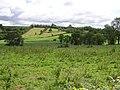 Drumhirk Townland - geograph.org.uk - 487413.jpg
