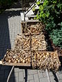 Drying out onion (2).jpg