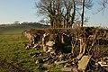 Drystone wall near Ballyculter - geograph.org.uk - 296269.jpg