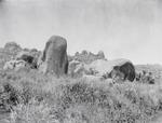 ETH-BIB-Hügel in der Serengeti-Kilimanjaroflug 1929-30-LBS MH02-07-0066.tif