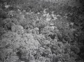 ETH-BIB-Ufer des Tschadsee-Tschadseeflug 1930-31-LBS MH02-08-0976.tif