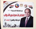 Egypt 2020 parliamentary election 16.png