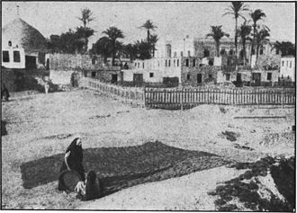 "Dry animal dung fuel - Egyptian women making ""Gella"" dry animal dung fuel"