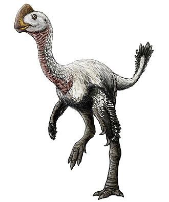 1981 in paleontology - Elmisaurus
