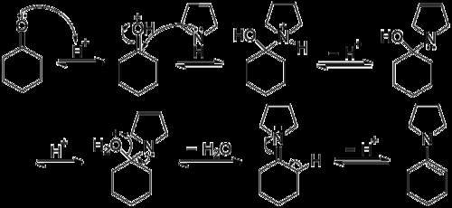 Le ring peut aussi servir de baisodrome - 2 8