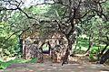 Enclosure 036.jpg