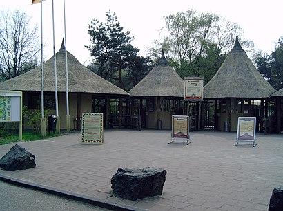Hoe gaan naar Safaripark Beekse Bergen met het openbaar vervoer - Over de plek