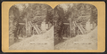 Entrance amphitheatre, from Robert N. Dennis collection of stereoscopic views.png