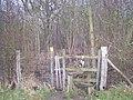 Entrance to Stone Horse Wood - geograph.org.uk - 1084388.jpg