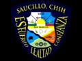 Escudo-saucillo-new.png